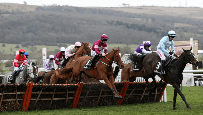 Ballymore Novices' Hurdle Trends - Cheltenham Festival Betting