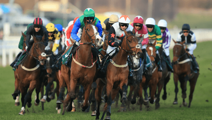 Champion Bumper Trends - Cheltenham Betting