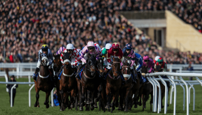 Pertemps Final Trends - Cheltenham Festival Betting