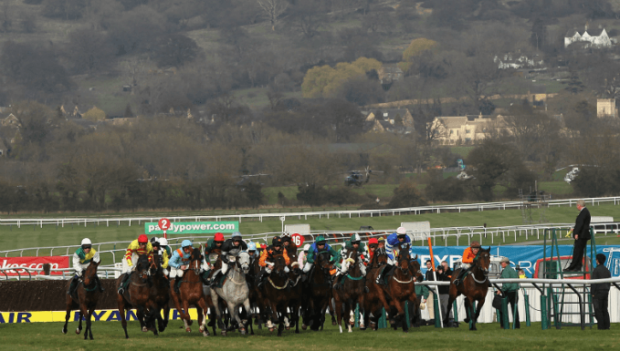 Kim Muir Handicap Chase Trends - Cheltenham Betting