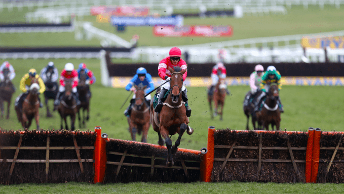 Dawn Run Mares' Novices' Hurdle Trends - Cheltenham Betting