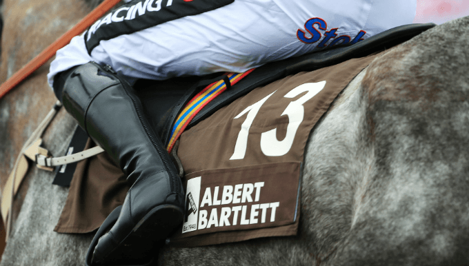 Albert Bartlett Novices' Hurdle Trends - Cheltenham Betting