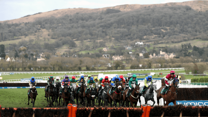 Martin Pipe Handicap Hurdle Trends - Cheltenham Betting