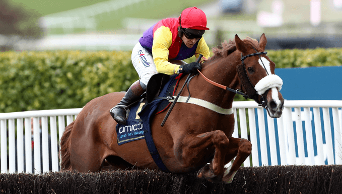 Native River won the 2018 Cheltenham Gold Cup and is popular in betting again in 2019
