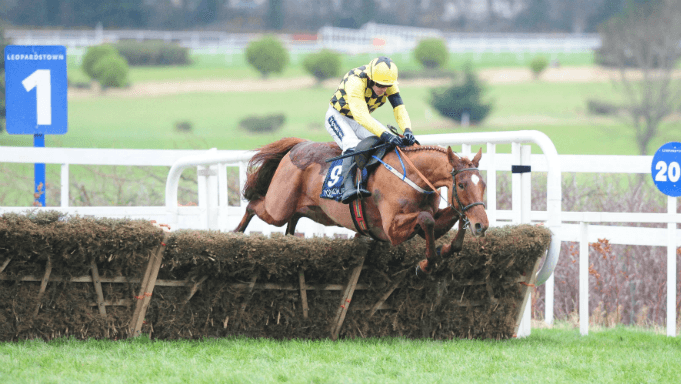 Melon was beaten only a neck in 2018's Champion Hurdle at Cheltenham