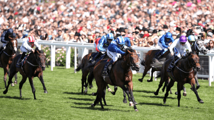 Daily Horse Racing Betting Tips