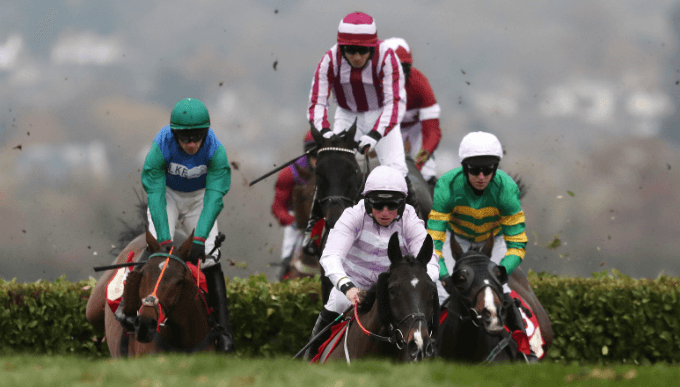 Cross Country Chase Trends - Cheltenham Festival Betting