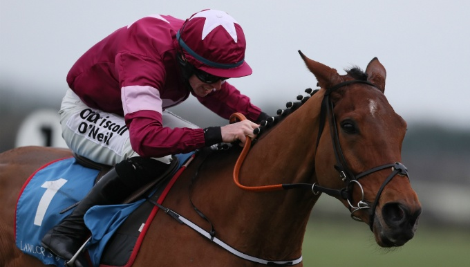 Ballymore Novices' Hurdle Betting Tips & Trainer Quotes