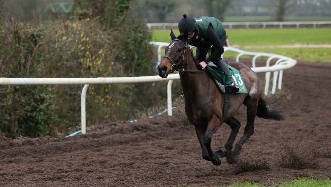 Cheltenham Mares' Hurdle Betting Tips, Odds & Trainer Quotes