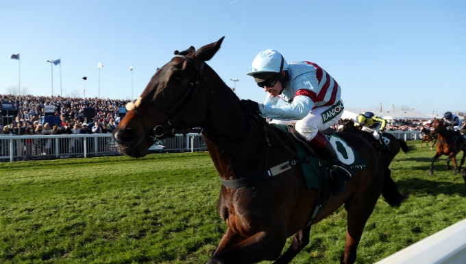 Arkle Novices' Chase Betting Tips, Preview & Trainer Quotes