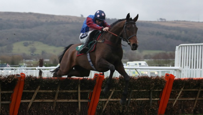 Stayers' Hurdle Betting Tips, Preview & Trainer Quotes