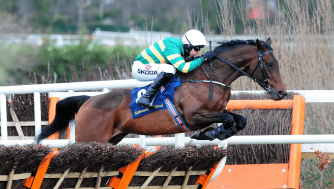 Triumph Hurdle Betting Tips, Preview & Trainer Quotes