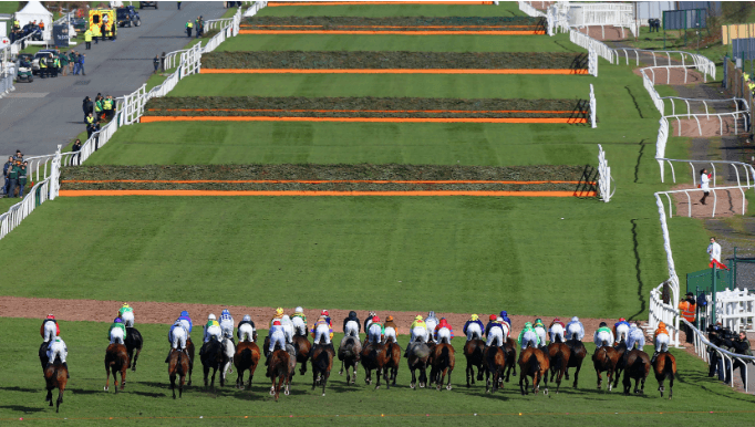 Grand National 2019 Runner-By-Runner Guide