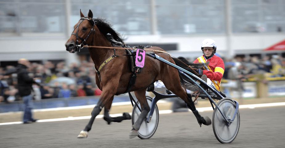 ATG anmäls till Konkurrensverket & Svensk Travsport får ny VD