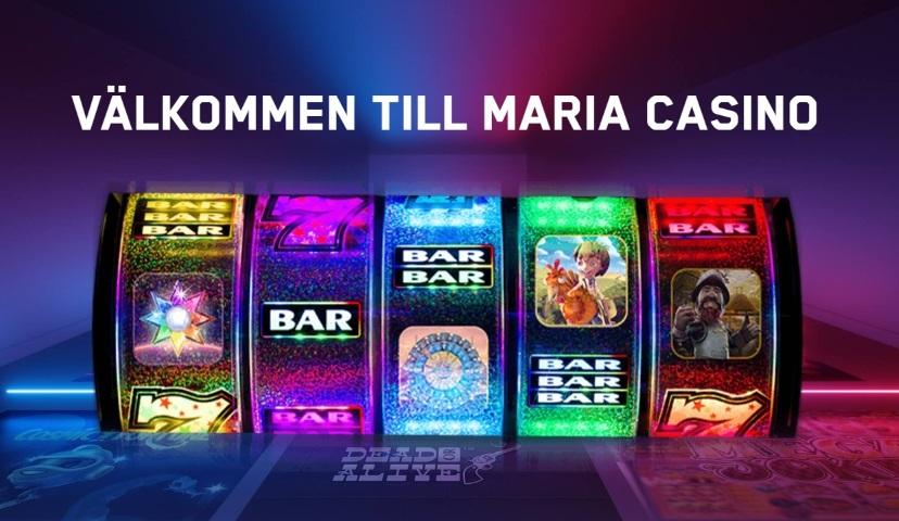 Hon blir ny Sverigechef för Kindred Groups Maria Casino
