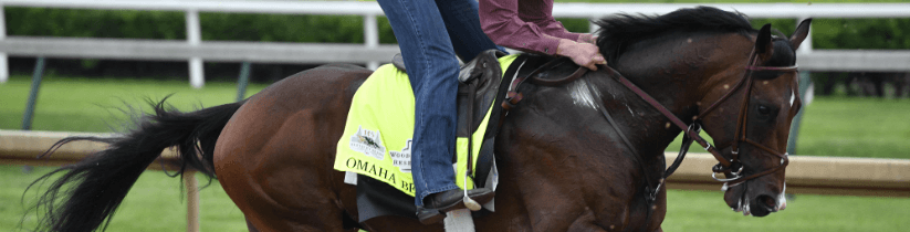 Kentucky Derby Odds, Field and Post Positions for Saturday