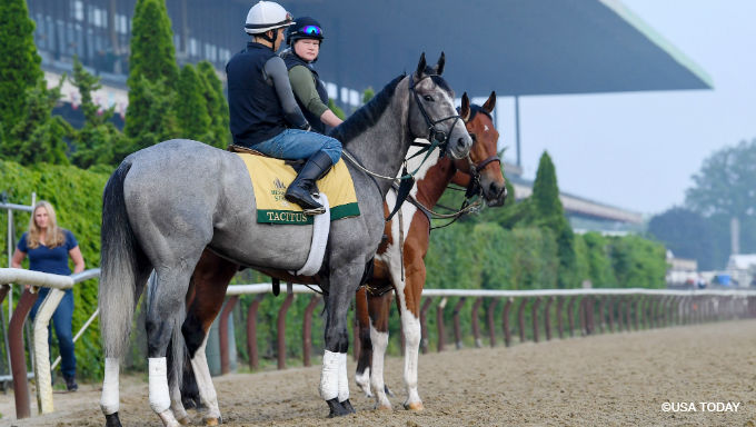 Belmont Stakes Tips & Analysis: Tacitus … or Intrepid Heart?