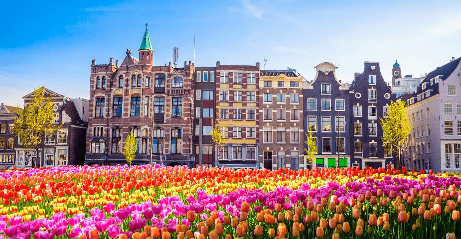 Nederländernas nya spellag öppnar dörren för onlinespel 2021