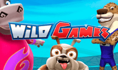 Wild Games Online Slot