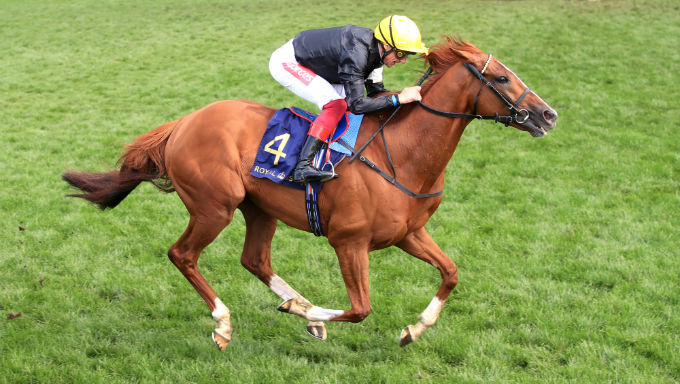 Glorious Goodwood 2020 Betting Guide & Free Bets