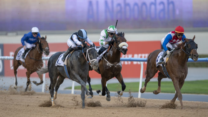 Which Horses are Likely to Race in the Lucrative Saudi Cup?