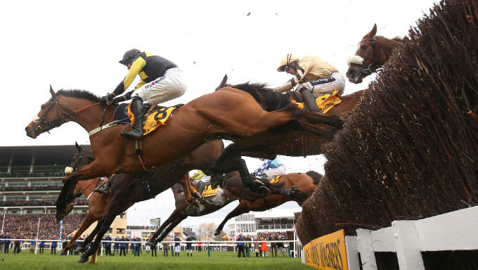 What Are The Changes To Cheltenham Festival and Why?