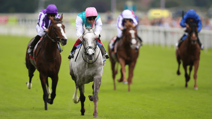 Logician One of 11 Declared For William Hill St Leger