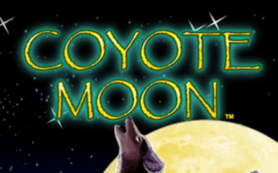 Coyote Moon Online Pokies