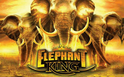 Elephant King Online Slot