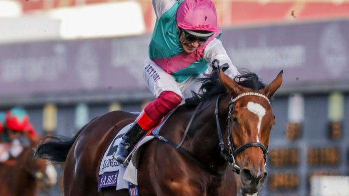 Enable Gets Stall Nine as Runners Are Confirmed For The Arc