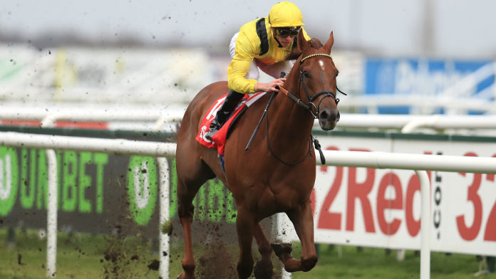 Punters Lumping on Soft-Ground Options Ahead of Champions Day