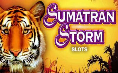 Sumatran Storm Online Slot