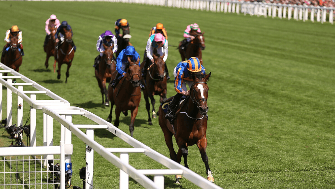 2019 Melbourne Cup Tips, Odds & Analysis