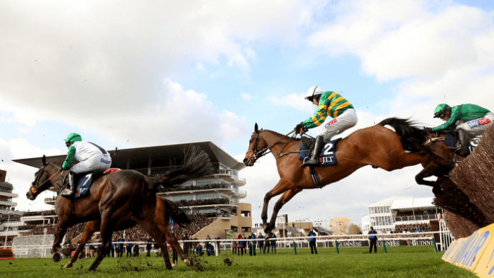 Marsh Novices' Chase 2021 Trends