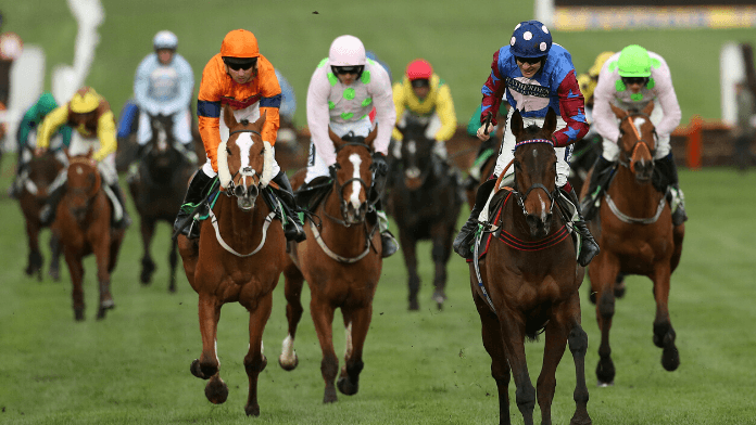 Stayers hurdle betting trends packers vikings line betting how does it work
