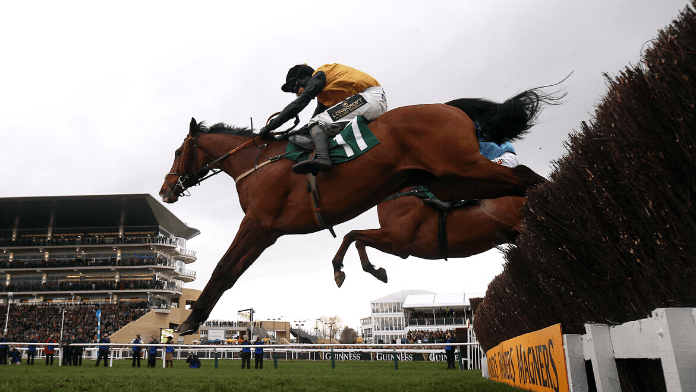 Grand Annual Handicap Chase 2021 Trends