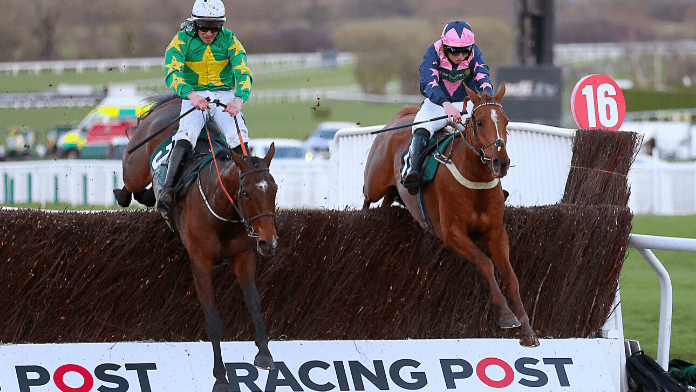 National Hunt Novices' Chase 2021 Trends