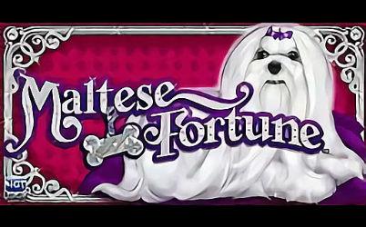 Maltese Fortune Slot