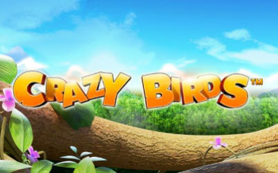 Crazy Birds Online Slot