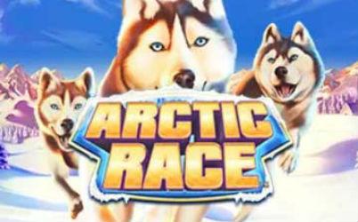 Arctic Race Online Slot