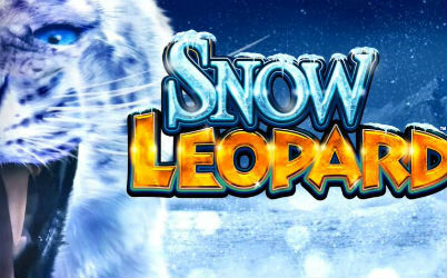 Snow Leopard Online Pokie