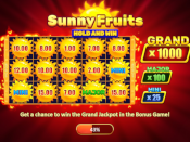 Sunny Fruits: Hold and Win Screenshot 1