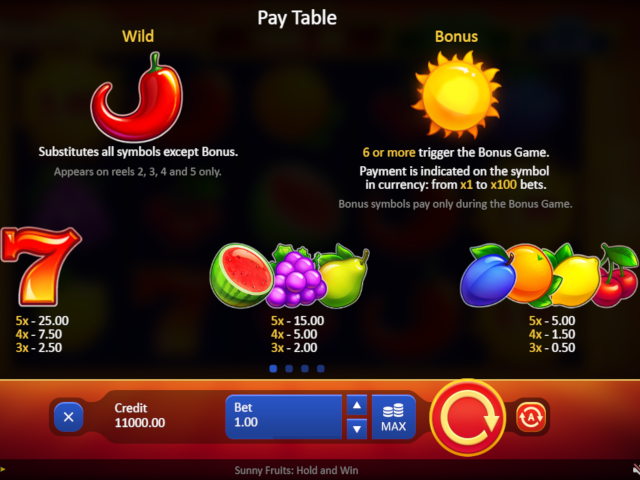 Sunny Fruits: Hold and Win Screenshot 2