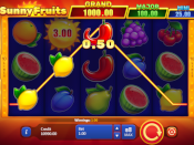 Sunny Fruits: Hold and Win Screenshot 4