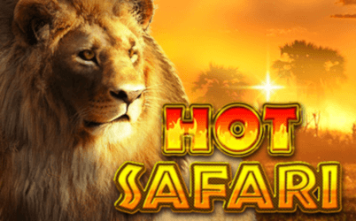Hot Safari Spielautomat