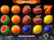 Hot To Burn Screenshot 1