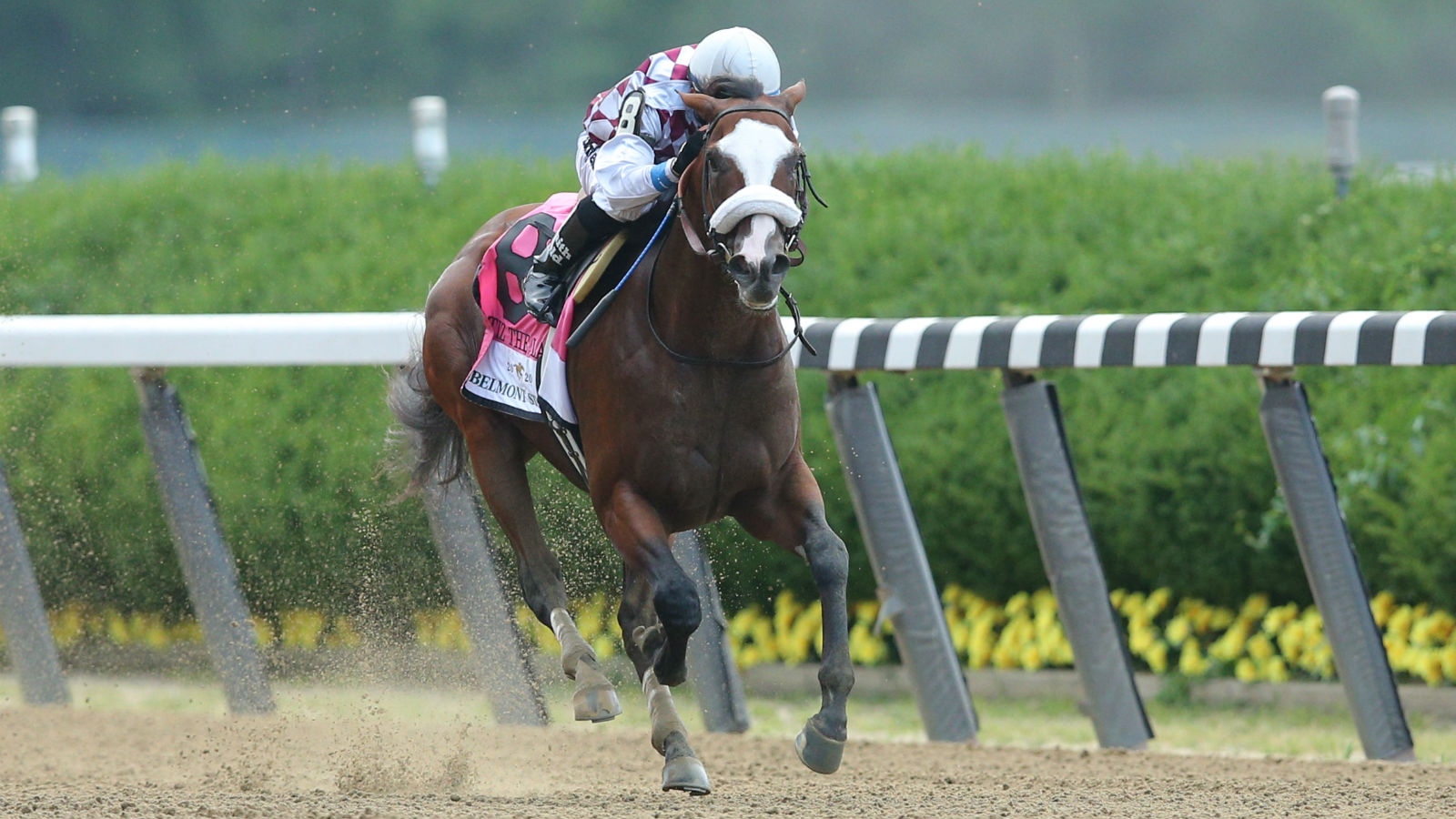 is online horse betting legal in michigan