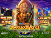 Buffalo Blitz II Screenshot 1