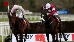 Betting on horses strategy formulation whitney on bet