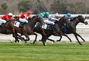 Racing Betting Strategy: Forecast and Tricast Bets